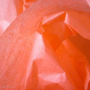 Seidenpapier, koralle, farbecht