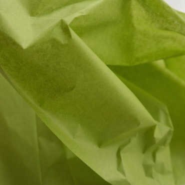 Seidenpapier, aloe, grün, farbecht