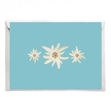 Postkarte Edelweiß, drei Edelweiß auf blauem Hintergrund, mit Briefumschlag