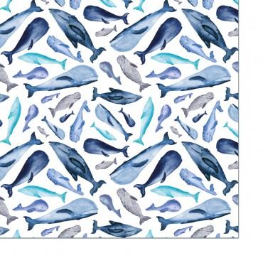 Geschenkpapier, Walfische, blau, Karte, einfarbiges Geschenkpapier