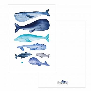 Postkarte, Walfische mit Herz, A6, mit Briefumschlag, Rückseite frei